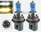 Various Bulb Type Xenon HID Auto Headlight High/Low Beam Halogen Bulbs 5000K