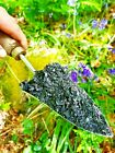Biochar soil improver and compost activator - 100% peat free & organic