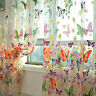 Butterfly Sheers Curtains Voile Tulle Floral Window Door Curtain Scarf Valanc~$$