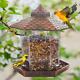 Hanging Wild Bird Feeder For Outside Outdoors Bird Seed Feeders Clearance Squi photo