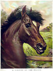 3311 Animal Vintage POSTER.Powerful Graphic Design.Horse painting. Art Decor.