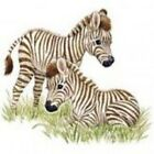 NEW ENDANGERED SPECIES BABY KIDS T-SHIRT - Zebras