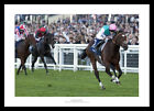 Frankel 2011 Queen Elizabeth II Stakes Horse Racing Photo Memorabilia