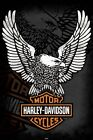 New The Harley Davidson Eagle Harley Davidson Poster