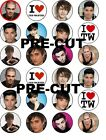 THE WANTED MUSIC EDIBLE WAFER PAPER TOPPERS CUPCAKE CAKE FAIRY MUFFIN FAIRY BUNS