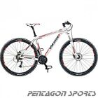 "29 er 29""  MTB Fahrrad Mountainbike 27 Gang Hardtail WHISTLE PATWIN 1488D"