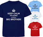 KEEP CALM I'M GOING TO BE A BIG BROTHER! DESIGNER BOYS T-SHIRT TSHIRT CHILDRENS