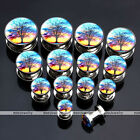 """6g-9/16"""" Stainless Steel Sunset Tree of Life Ear Tunnel Plugs Expander Earlets"""