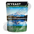 Wyeast 1028 London Ale Liquid Home Beer Brewing Yeast Homebrew PRIORITY SHIPPING
