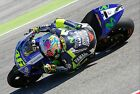 Valentino Rossi - Yamaha 2014 - A1/A2/A3/A4 Photo / Poster Print - Misano #5