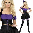 Ladies Purple Witch Costume PLUS Hat - Witches Fever Halloween Fancy Dress