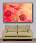 "Poppy flowers Huge giclee canvas print. Abstract art 30""x40"""