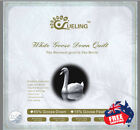 White Goose-down Quilt  Luxury pure Cotton Cover, all sizes, promotion!