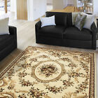 Ivory Floral French Aubusson Area Rug Scrolls Vines Oriental Persian Carpet