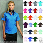 Ladies Womens Short Sleeve Blouse Shirt Business Work top size 6-26 many colours