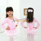 Girls Kid Ballet Dance Tutu Dress Leotard Skirt Costume Dancewear Gymnastic 3-8Y