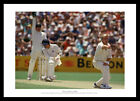 Shane Warne Australia Cricket Legend Photo Memorabilia (751)
