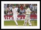 James Anderson Celebrates 2013 England Ashes Cricket Photo Memorabilia (889)