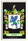 MASON Family Coat of Arms Crest - Choice of Mount or Framed