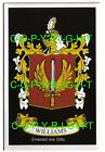 WILLIAMS Family Coat of Arms Crest - Choice of Mount or Framed