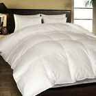 1000 TC Egyptian Cotton Cover European White Down Comforter