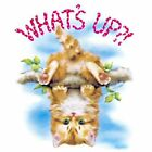 NEU FUN Humor Fantasy T-Shirt Cat Katze What's Up S - 6XL