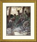 Global Gallery 'As Pants The Hart' by James Tissot Framed Painting Print