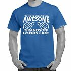 Starlite~Mens Funny Sayings Slogans T Shirts-Awesome Grandson Looks tshirt