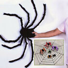 Home Spider Halloween Prop Spider Webbing Indoor Outdoor Party Bar DIY Decor