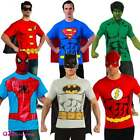 MENS OFFICIAL SUPERHERO ADULT T-SHIRT BATMAN SUPERMAN FLASH HULK SPIDERMAN ROBIN