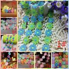 1Yard Colored flowers lace Trim Embroidered Fabric  DIY Sewing Applique  LS39