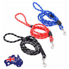 Pet Dog Puppy Pro Cesar Millan Training Leash Slip Lead Pets Nylon Rope 160cm AU