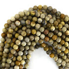 Fossil Coral Round Beads Gemstone 15.5