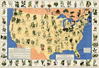 Midcentury Medicinal Plant Map of the USA Historical Wall Poster Home School