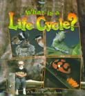what is the life cycle of a penguin - WHAT IS A LIFE CYCLE? - KALMAN, BOBBIE/ LANGILLE, JACQUELINE - NEW PAPERBACK BOO