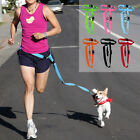 Внешний вид - Easy Adjustable Hand free Dog Pet Walking Running Jogging Lead Leash Waist Belt