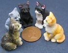 1:12 Scale Sitting Resin Cat Dolls House Miniature Garden Pet Animal Accessory