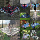 2017Women Butterfly Wing Large Cape Scarf Gradient Printing Beach Cover Up Shawl