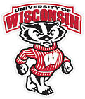 Wisconsin Badgers Vinyl Sticker Decal **many Sizes** Cornhole Truckcar Wall