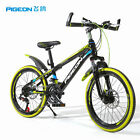 "20"" Flying Pigeon Mountain Bike Frame Bicycle Sports Bicycle Children Gift USA"