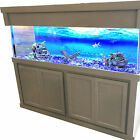 Tucker Murphy Pet Mattson Aquarium Stand