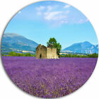 Pattern Art 'Old House and Tree in Lavender Field' Photographic Print on Metal