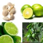 9Types Chinese Cabbage Green Vegetable Seeds Fruit Seeds Home Garden