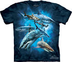 The Mountain 100% Cotton Kid's Shark Collage T-Shirt Tee Blue S & M NWT