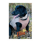 Gamehide ElimiTick Protective Dog VestHunting Dog Supplies - 71110
