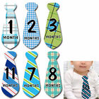 MONTHS IN MOTION Pregnancy Week By Week Belly Photo Stickers Baby Bump Maternity