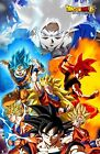Dragon Ball Super Poster Goku Transformations SSJ God Ultra Instinct 11x17 13x19