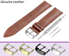 Fits-ALANGE-SOHNE-Watch-Brown-Genuine-Leather-Strap-Band-for-Buckle-Clasp