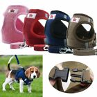 Breathable  Small Dog Cat Pet Mesh harness Vest Collar Chest Strap Leash XS-XL