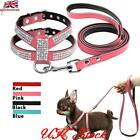 Dog Small Dog Harness And Leash set Suede Leather Rhinestone Pet Harnesses Leads